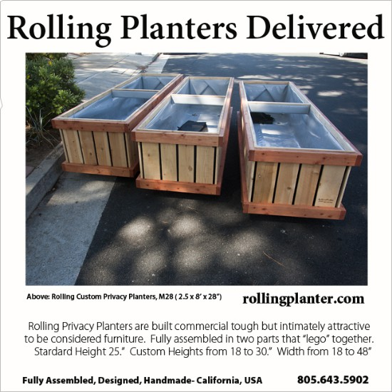 t.DELIVERY.PLANTERS.KLEIN.SM.SQ