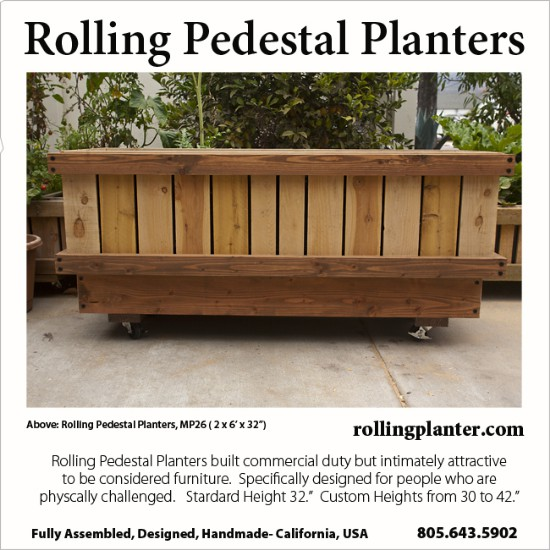 t.PEDESTAL.PLANTERS.MP6HOLLY2.SQ