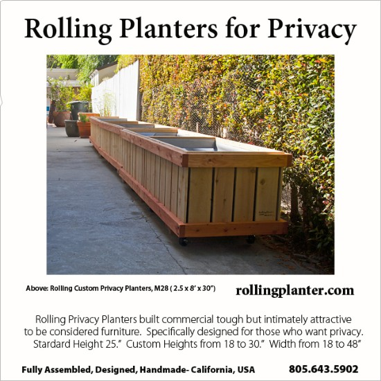t.PRIVACY.PLANTERS.KLEIN.SQ